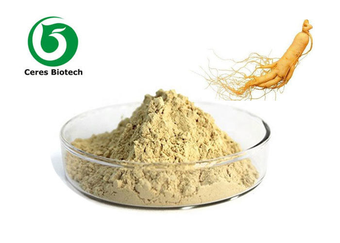 Natural Ginseng Extract 5%-80% Ginsenoside for Healthcare Supplyment