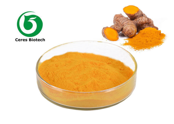 Health Care Natural Turmeric Curcumin Extract 95% For Anti-inflammatory