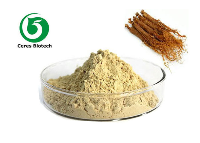 Pure Natural Red Ginseng Extract Powder Ginsenoside 10% For Improving Immune