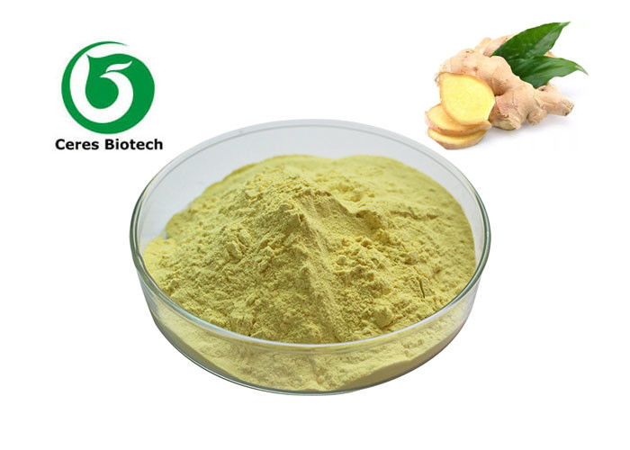 Herbal Extract Powder Ginger Root Extract Powder Gingerols 1% 5% 10%